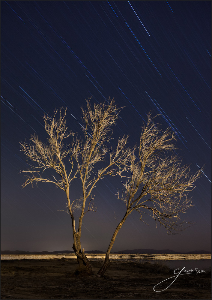 New Mexico The Night Watcher by Gavin Seim r2 The Night Watcher   New Mexico