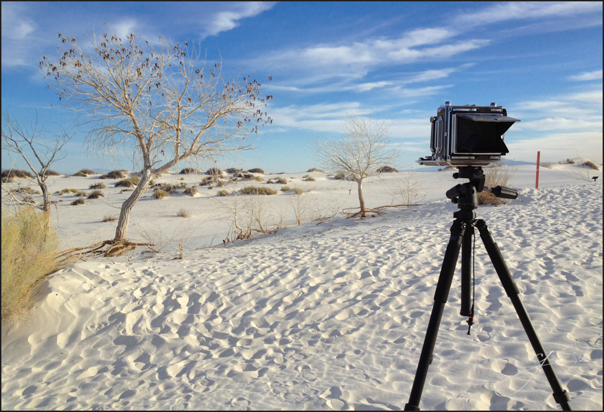 There's nothing like the pastel light during sunrise at White Sands. Hoping I pulled a few good on the view camera.
