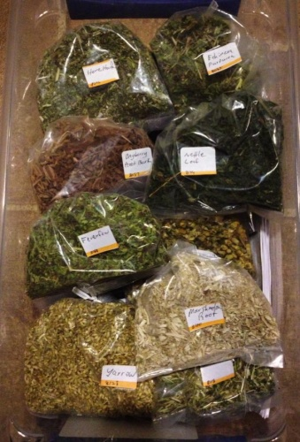 We now have good stock of herbs to cover everything from fever to bleeding. The primary med kit is also well stocked.