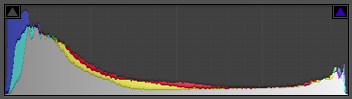 Histogram of the finished image showing the full tonal range.